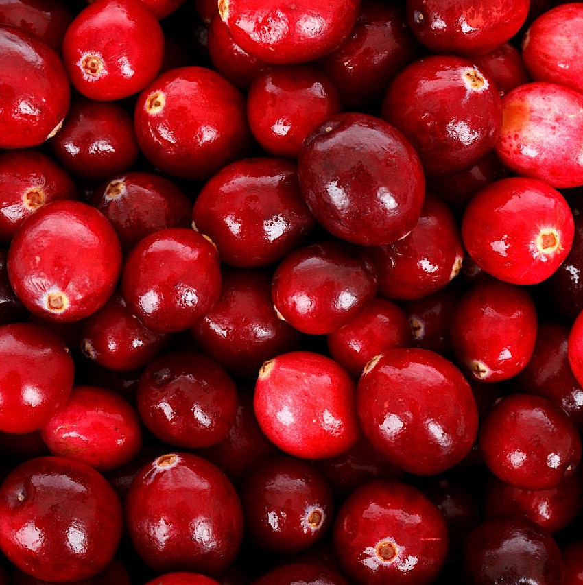 Cranberries sweetened organic whole - 100g