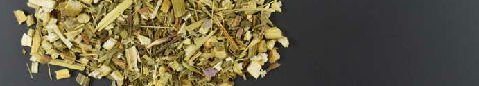 Coneflower purple herb cut - 1000g