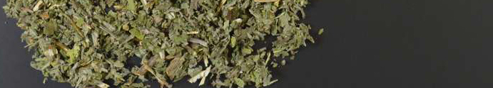 Apple mint herb organic cut - 1000g