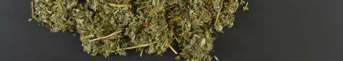 Silverweed organic cut - 1000g