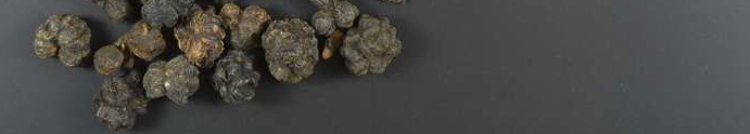 Noni berries whole - 1000g
