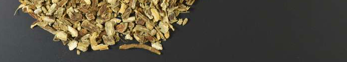 Coneflowers pale root organic cut - 1000g